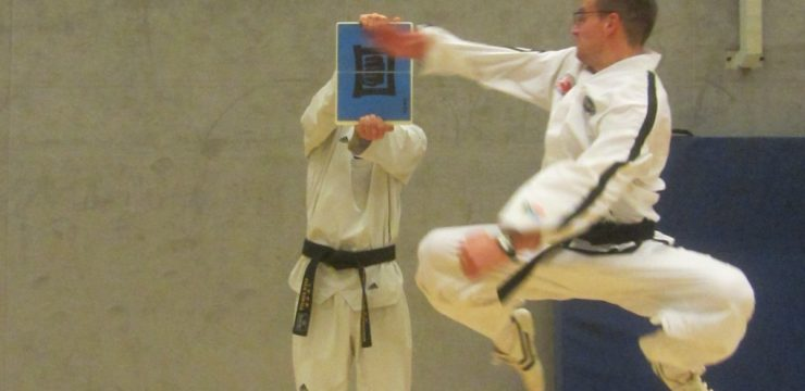 taekwondo neu 4