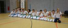 Shinbukai-Karate