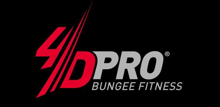 _06_4D-Pro-Bungee-Logo-60×30-RGB